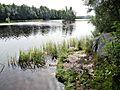 The river Vuoksa DSCN3975.jpg