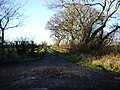 The road to Wood End Farm - geograph.org.uk - 631524.jpg