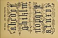 The signist's book of modern alphabets, plain and ornamental, ancient and mediæval, from the eighth to the twentieth century, with numerals (1906) (14770500565).jpg