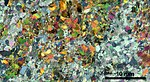 Thin section scan crossed polarizers Siilinjärvi R636-105.90.jpg