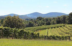 Three Sisters, Lumpkin County, Georgia.jpg