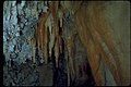 Timpanogos Cave National Monument TICA2278.jpg