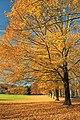 Tinicum Park (10) (10681722274).jpg