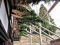 Todai-ji Nigatsu-do National Treasure 国宝東大寺二月堂49.JPG