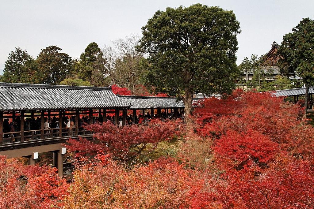 Tofuku-ji (4587231577)