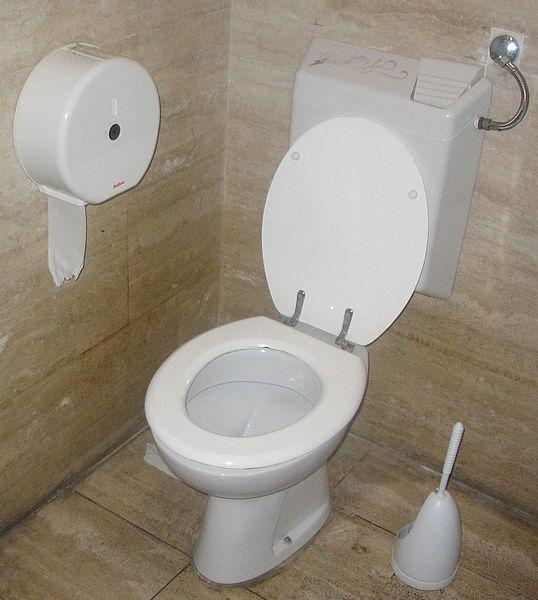 En vanlig toalett, s.k. vattenklosett.
