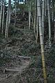 Torao-yama 002.jpg
