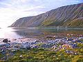 Torsvaag sandfjord.jpg