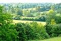 Towards Howe Grove Wood - geograph.org.uk - 1344690.jpg