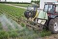Tractor Fiat 70-76 04.jpg