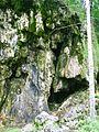 Travertinova kupa po nekdejsim vodopadu, Plitvicka jezera.jpg