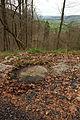 Trichtersperre Haselbach-0298.jpg