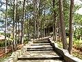 Truc Lam Zen Monastery 13.jpg