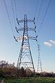 Tyne Crossing tall pylons 41.jpg