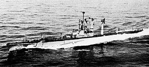USS Burrfish (SSR-312) underway in 1954.jpg
