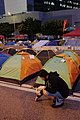 Umbrella Revolution (15842869107).jpg