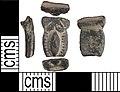 Unidentified Object, A copper-alloy unidentified object, probably a brooch. (FindID 586790).jpg