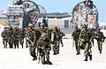 Unitas Gold Amphibious Assault Exercise DVIDS168749.jpg