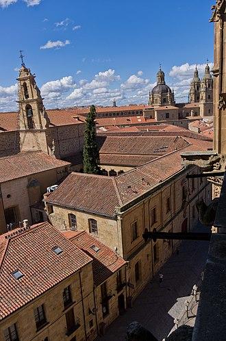 Ignacio Baleztena Ascárate - University of Salamanca