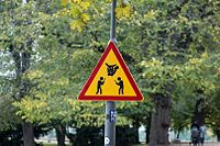 Unofficial Pokemon Go sign in Helsinki.jpg