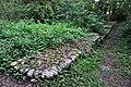Unterengstringen - Glanzenberg, mittelalterliche Wüstung 2011-09-06 18-32-44.JPG
