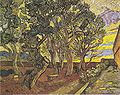 Van Gogh - Garten des Hospitals Saint-Paul4.jpeg