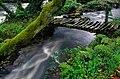 Verdes - panoramio - Javier B (2).jpg