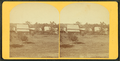 Vew of homes in Laconia, N.H, from Robert N. Dennis collection of stereoscopic views.png