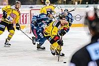 Vienna Capitals vs Fehervar AV19 -131.jpg