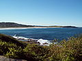 View from Dee Why Cliffs.jpg