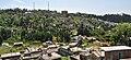 View of Mirik Town.jpg