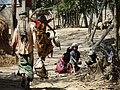 Village Scene - Outside Srimangal - Sylhet Division - Bangladesh (12904242623).jpg