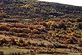 Villarluengo, 44559, Teruel, Spain - panoramio (1).jpg