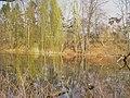 Volkspark Rehberge - Moewensee - geo.hlipp.de - 34996.jpg