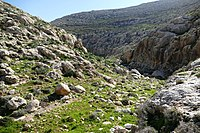 Wadi-Makukh-531.jpg