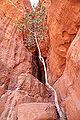 Wadi Rum - Jordanie 07-2012 (7631262510).jpg