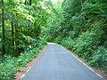 Waldwirtschaftsweg - geo.hlipp.de - 2648.jpg