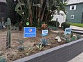 Warren and Sanders signs, home, Burbank, California (48810763492).jpg