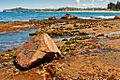 Warriewood Beach, Sydney (2934281672).jpg