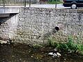 Wasserstandsanzeige in Burkhardtsdorf.JPG