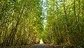 Wege der Natur.jpg