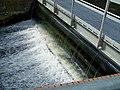 Weir on The River Stepenitz.jpg