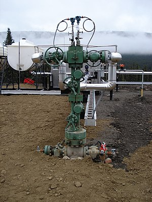 Wellhead - Oil well Christmas tree
