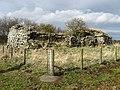 Whiteside Tower - geograph.org.uk - 744732.jpg