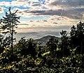 Widok z Malinowej w kierunku Karkonoszy.jpg