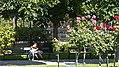 Wien 01 Volksgarten q.jpg