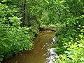 Wilkinson Creek, North Carolina.jpg