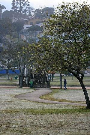 Winter in Brazil