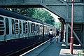 Woldingham railway station (EPB bars) 01.JPG