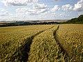 Wolds panorama near Rudston - geograph.org.uk - 1408834.jpg